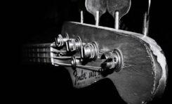 BASSTORY: Historia gitary basowej