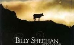 "Billy Sheehan ""Holy Cow"""