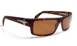 Okulary od Jamesa Hetfielda
