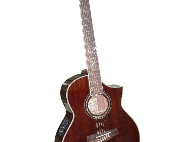 Pierwsza gitara 12 strunowa Ibanez z serii Exotic Wood