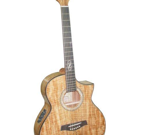 Nowy limitowany model gitary Ibanez EW50SME NT
