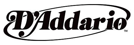 Dotychczasowe logo D'Addario