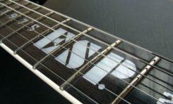 Javier Reyes (Animals as Leaders) w rodzinie ESP Guitars