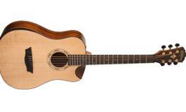 Gitary 3/4 w serii Washburn Comfort