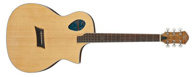 Gitary elektroakustyczne Michael Kelly Triad