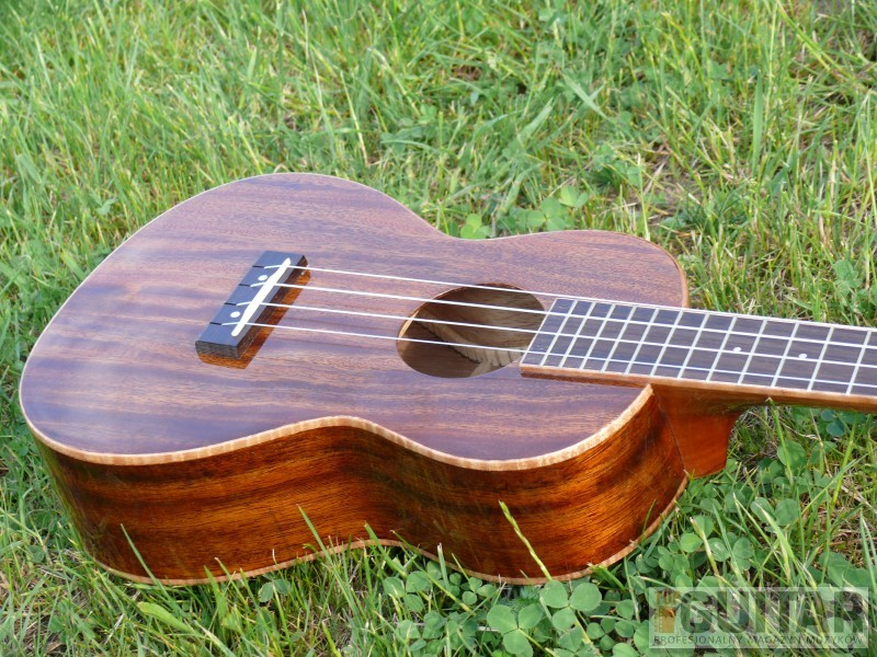 Tanglewood TUJ5 – test ukulele