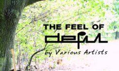 "Projekt ""The Feel of DEFIL"""