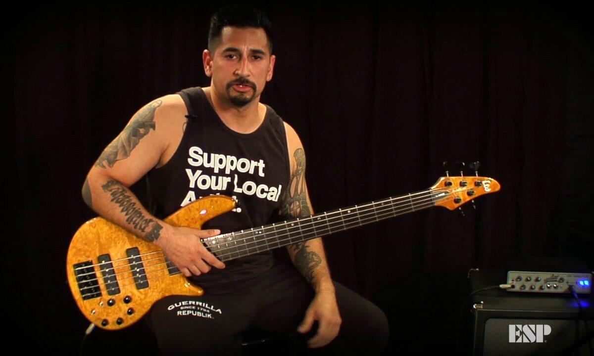 Gitara basowa ESP LTD H-1005SE