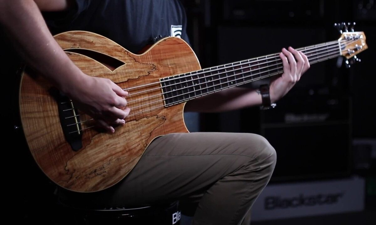 ESP rozwija serię basowych gitar akustycznych ESP Thinline o dwa nowe instrumenty