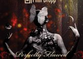 "Pinn Dropp - ""Perfectly Flawed"""