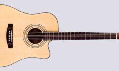 Mr Guitarist: ESP LTD DC-5E NAT